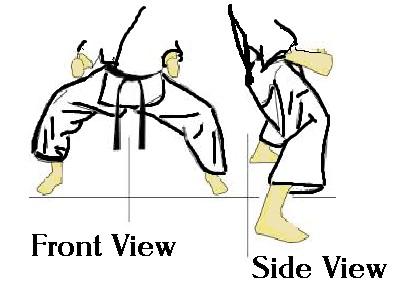 kiba dachi seishin freestyle karate Brendan Donnelly