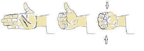 make a fist Seishin Freestyle - irishkickers.com