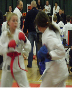 "Members of Seishin freestyle Karte Ireland ""Kumite"" Ireland 2008"