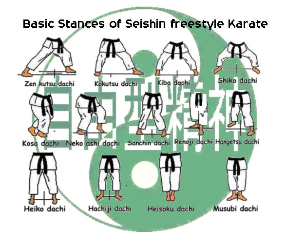 seishin freestyle karate stances
